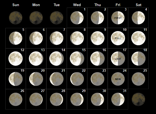 January 2020 Moon Calendar