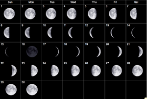 January Calendar 2019 Moon Calendar