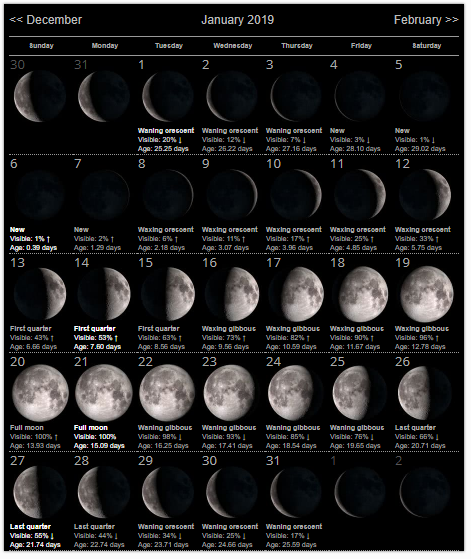 Moon Phases January 2019 Calendar