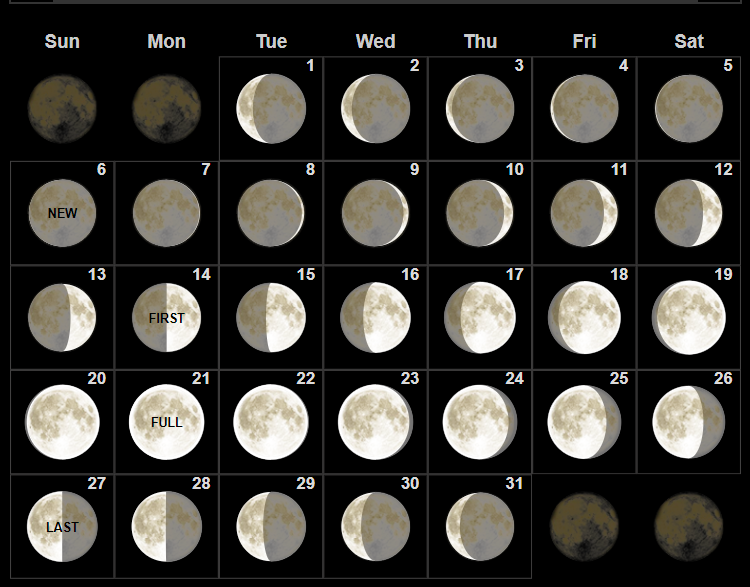 Moon Phases January 2019