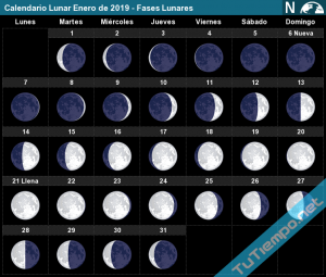 Feb 2019 Calendar Moon Phases