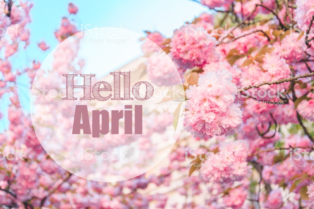 Hello April Images on Pinterest
