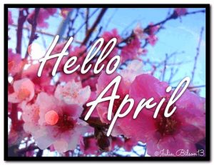 Hello April Pics