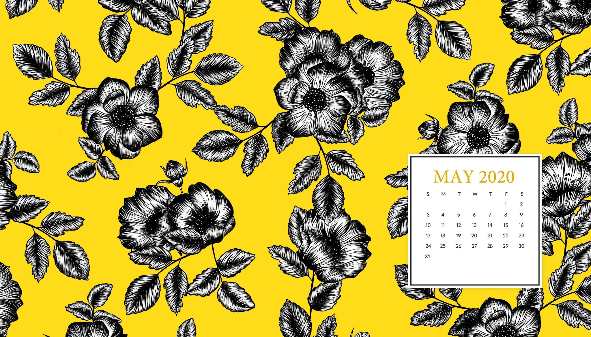 May 2020 Calendar Backgrounds