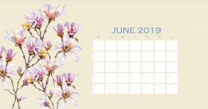 Beautiful June 2019 Calendar Design