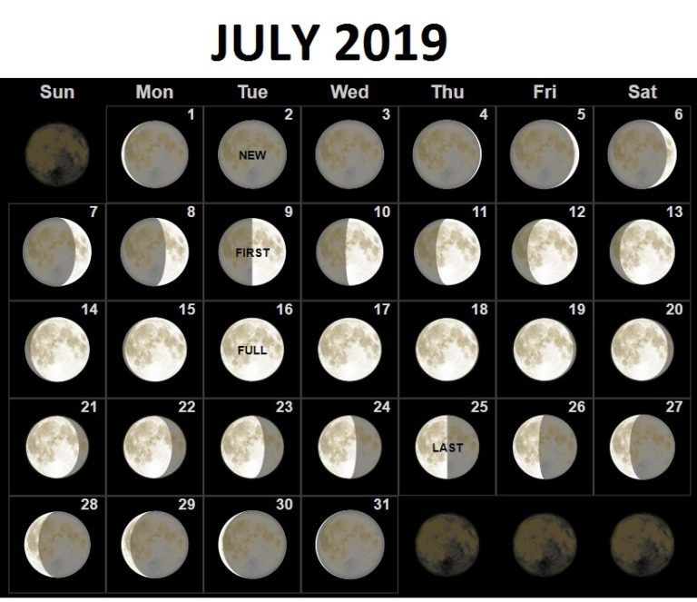 July 2019 Calendar Moon