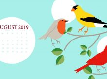 August 2019 HD Desktop Calendar
